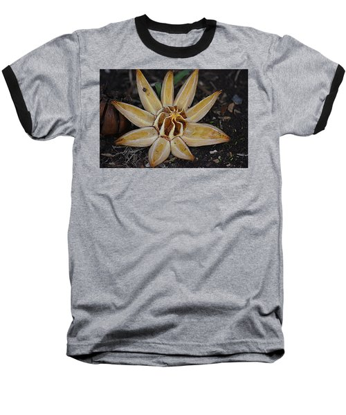 Botanical Garden Seed Pod Baseball T-Shirt by Lori Seaman