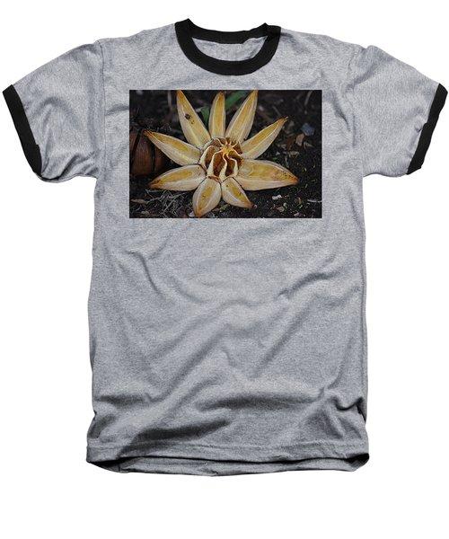 Botanical Garden Seed Pod Baseball T-Shirt