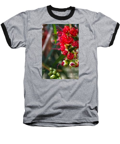Bottlebrush Baseball T-Shirt