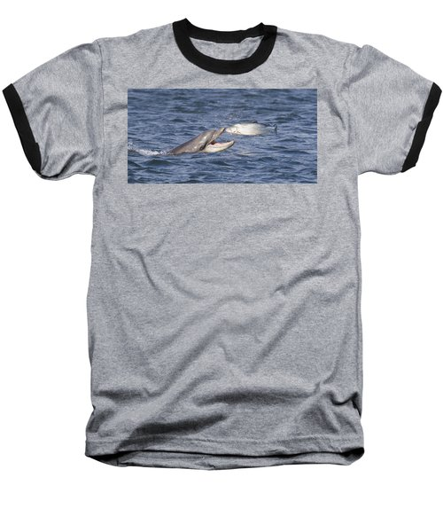 Bottlenose Dolphin Eating Salmon - Scotland  #36 Baseball T-Shirt