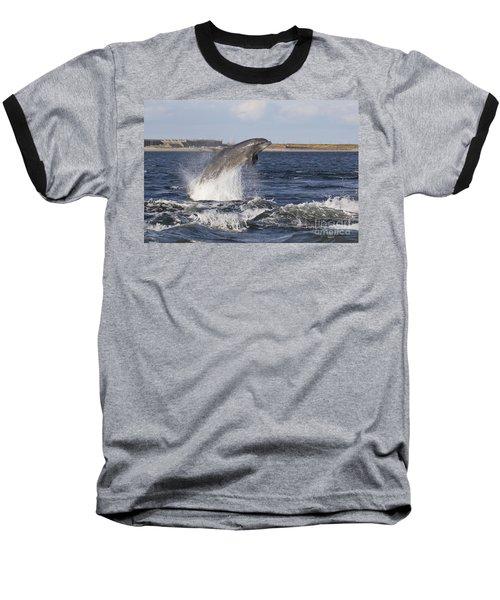 Bottlenose Dolphin - Scotland  #26 Baseball T-Shirt