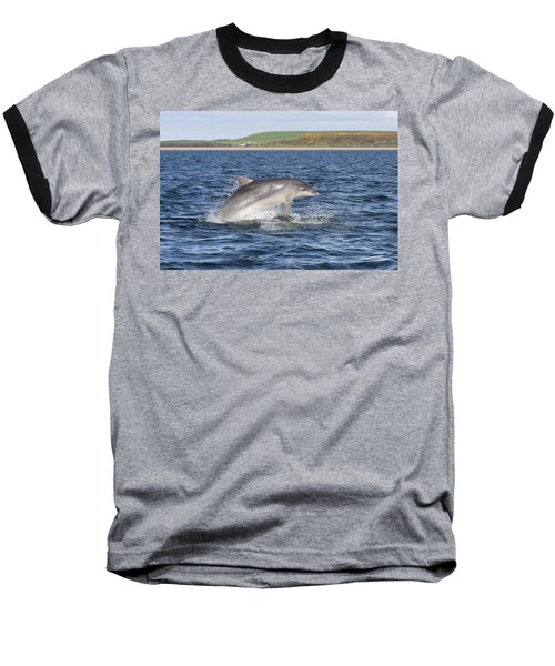 Bottlenose Dolphin - Scotland  #32 Baseball T-Shirt
