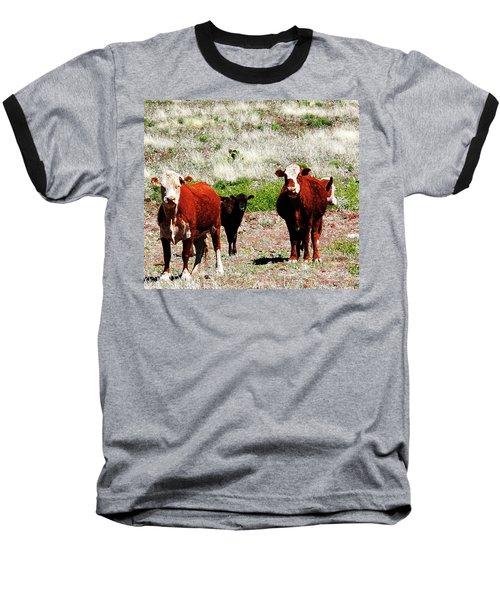 Bovine Baseball T-Shirt