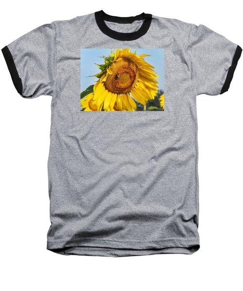 Bowed Sunflower Baseball T-Shirt