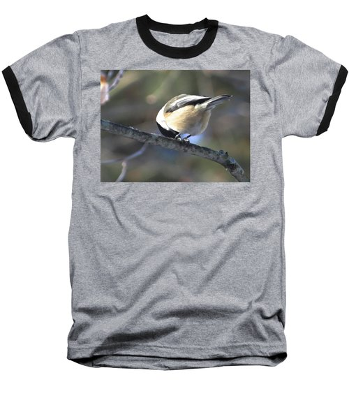 Bowing On A Branch Baseball T-Shirt