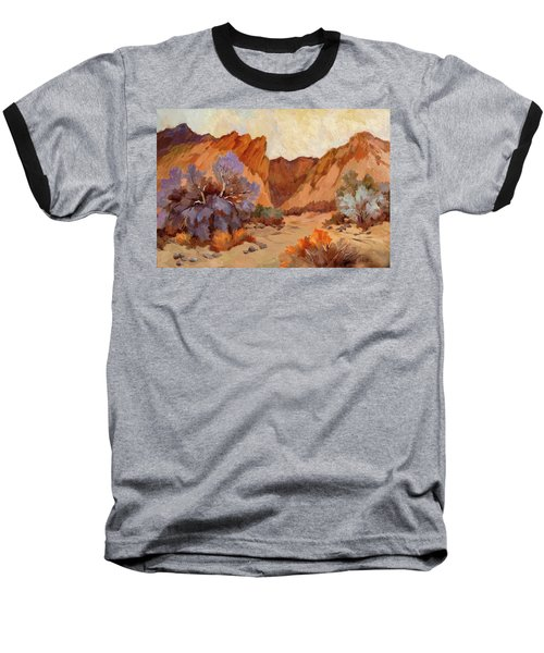 Box Canyon Baseball T-Shirt by Diane McClary
