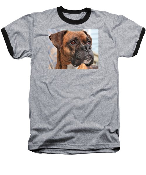 Boxer Portrait Baseball T-Shirt by Debbie Stahre