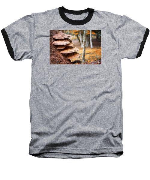 Bracket Fungus On Beech Tree Baseball T-Shirt