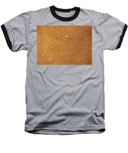 Brain Coral 47 Baseball T-Shirt