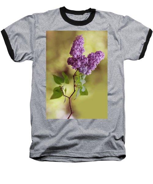 Branch Of Fresh Violet Lilac Baseball T-Shirt
