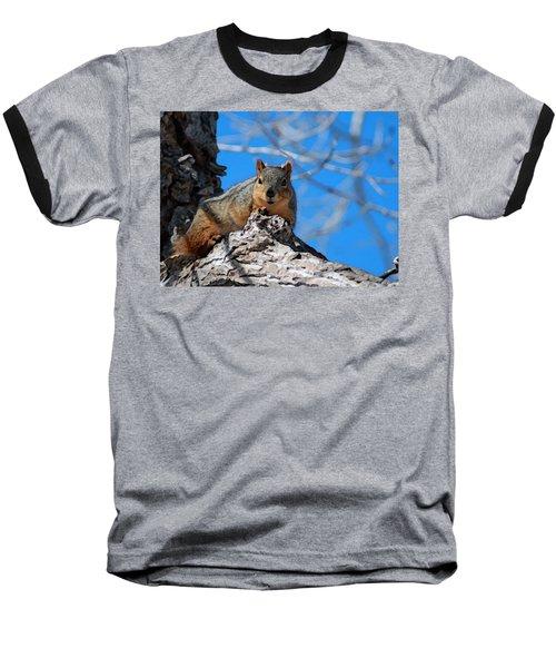 Branch Squirrel Baseball T-Shirt