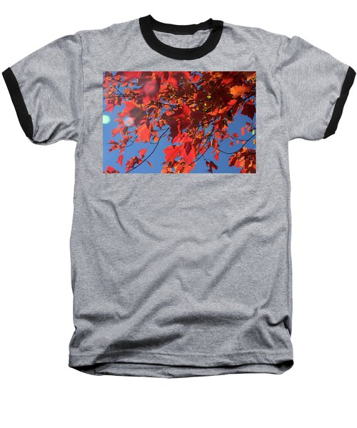 Branches Of Red Maple Leaves On Clear Sky Background Baseball T-Shirt by Emanuel Tanjala
