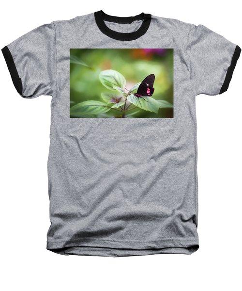Brave Butterfly  Baseball T-Shirt