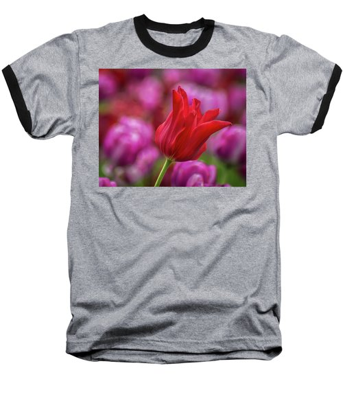 Baseball T-Shirt featuring the photograph Brazenly Delicate by Bill Pevlor