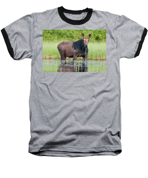 Breakfast At Mooshead Baseball T-Shirt