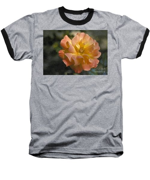 Baseball T-Shirt featuring the photograph Bridal Pink Yellow Hybrid Tea Rose Genus Rosa by David Zanzinger
