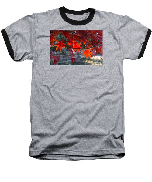 Bright Autumn Leaves Baseball T-Shirt by Yumi Johnson