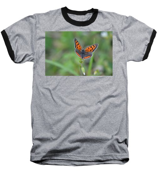 Bright Copper Baseball T-Shirt by Janet Rockburn