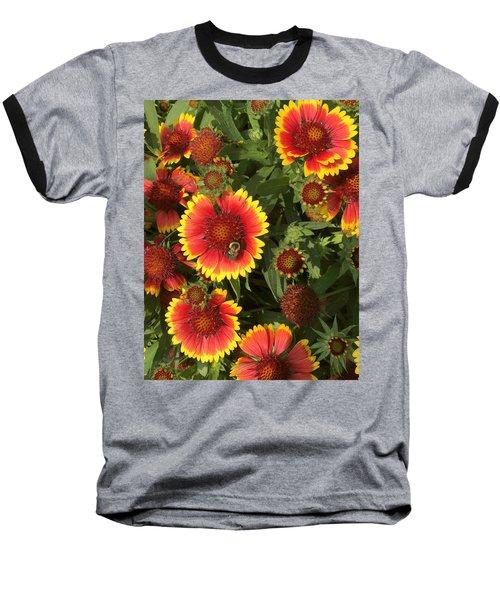 Bright Daisy-like Baseball T-Shirt