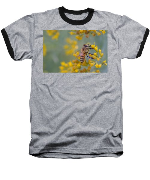 Bright Eyed Bee Baseball T-Shirt