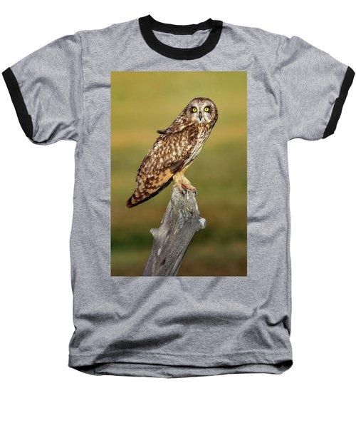Bright-eyed Owl Baseball T-Shirt