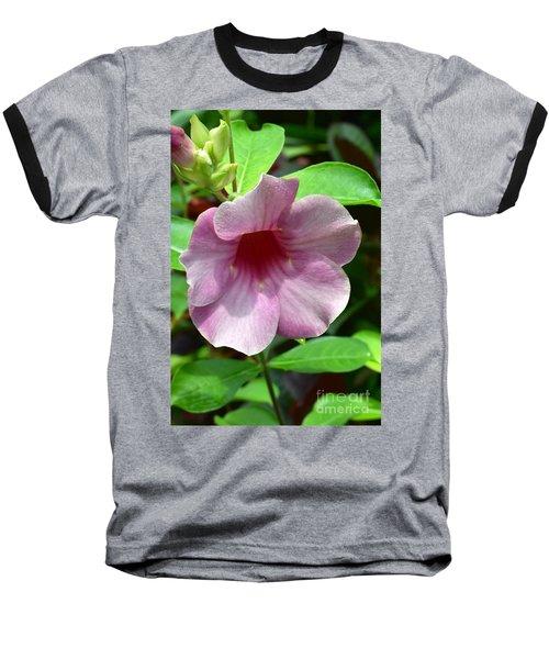 Bright Mandevillia Baseball T-Shirt