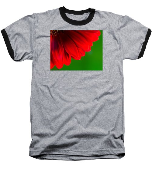 Bright Red Chrysanthemum Flower Petals And Stamen Baseball T-Shirt by John Williams
