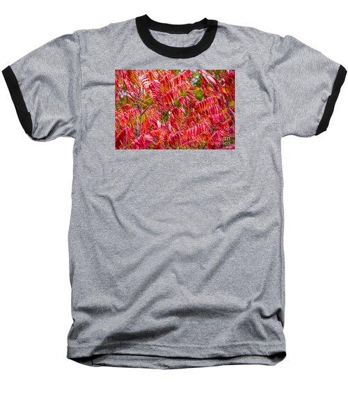 Bright Red Leaves Baseball T-Shirt