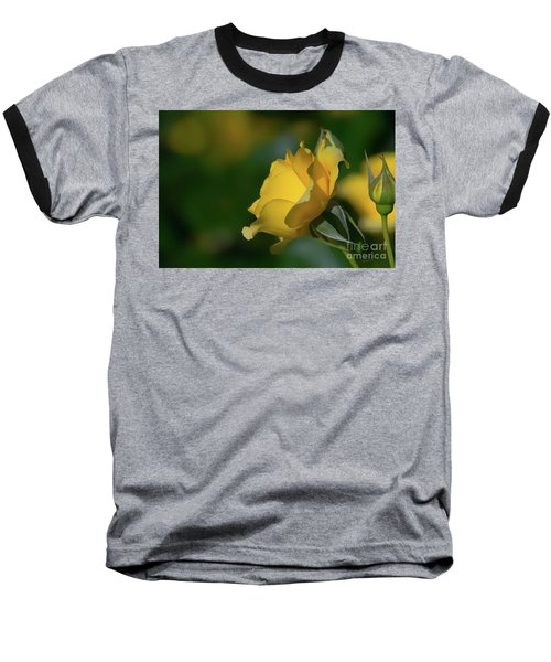 Bright Yellow Walking On Sunshine Rose Baseball T-Shirt