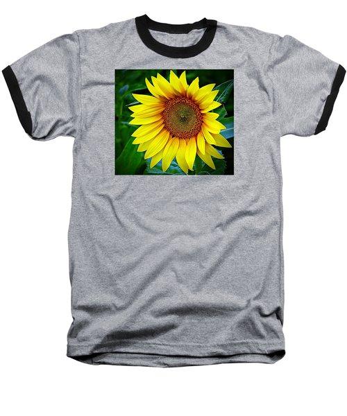 Brighten Your Day Baseball T-Shirt