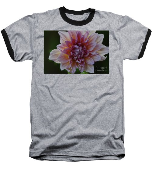 Brilliance Of A Dahlia Baseball T-Shirt