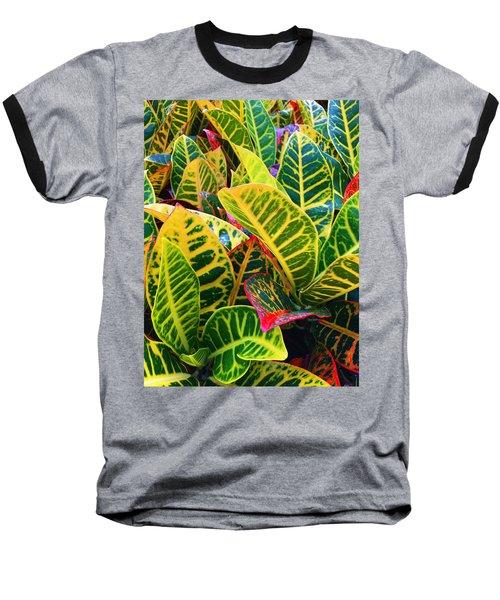 Brilliant Crotons Baseball T-Shirt by Kay Gilley
