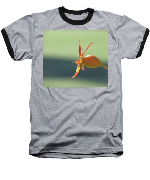 Brilliant Seed Pod Baseball T-Shirt