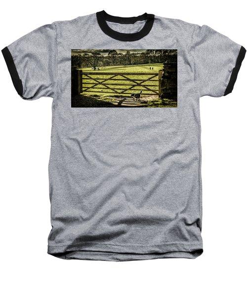 Bringing It Back Baseball T-Shirt