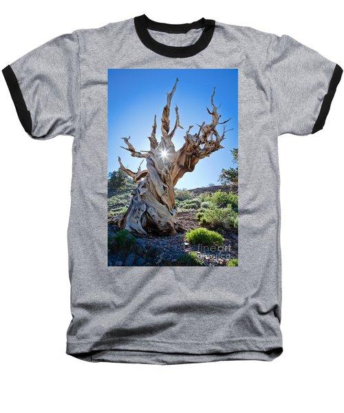 Bristlecone And Sun Baseball T-Shirt