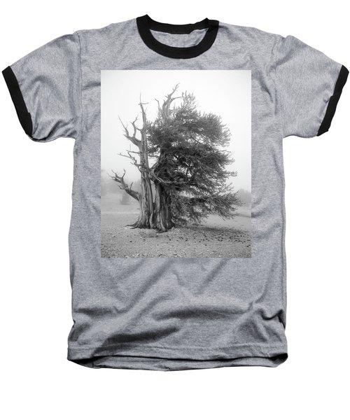 Bristlecone Mist Baseball T-Shirt