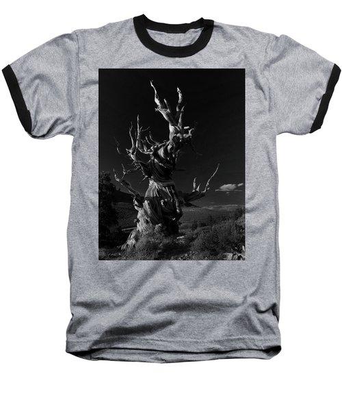 Bristlecone Pine Baseball T-Shirt by Art Shimamura