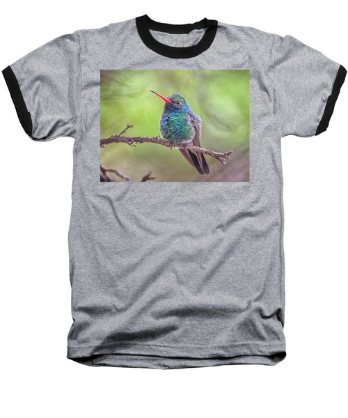 Broad-billed Hummingbird 3652 Baseball T-Shirt