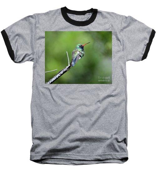 Broad-billed Hummingbird Baseball T-Shirt