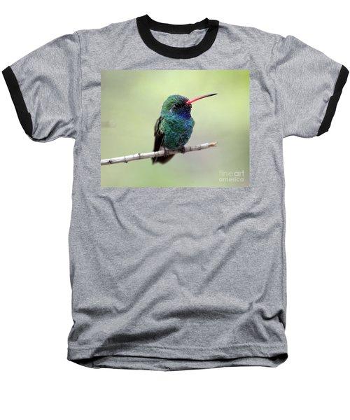 Broad-billed Hummingbird Portrait Baseball T-Shirt
