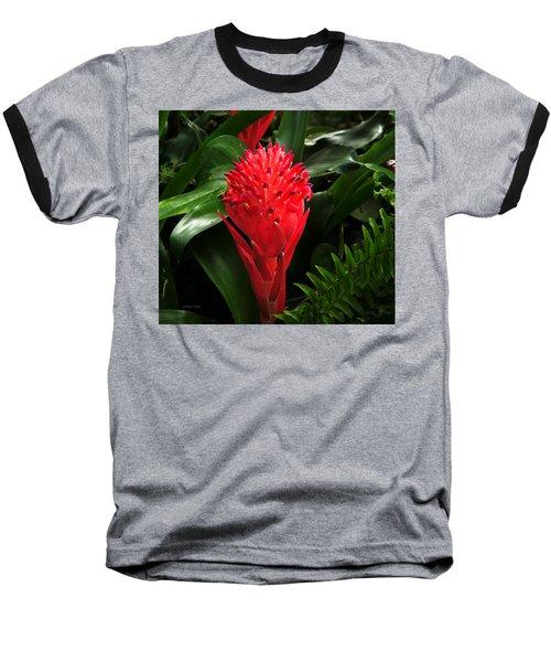 Bromeliad 9-18-15 Baseball T-Shirt