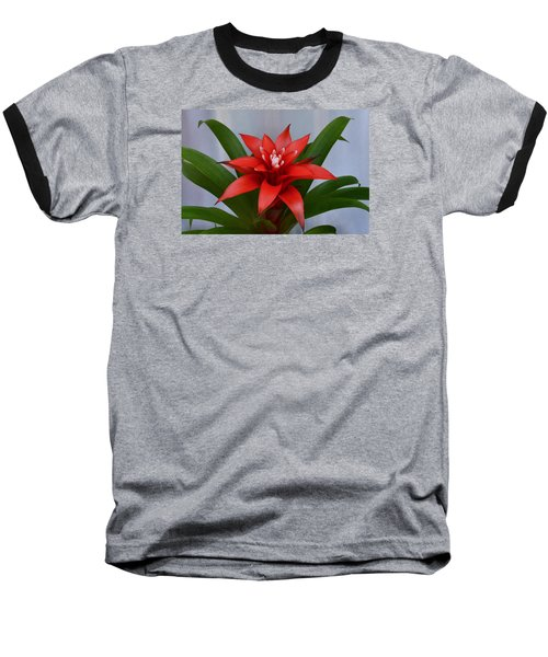 Bromeliad Baseball T-Shirt