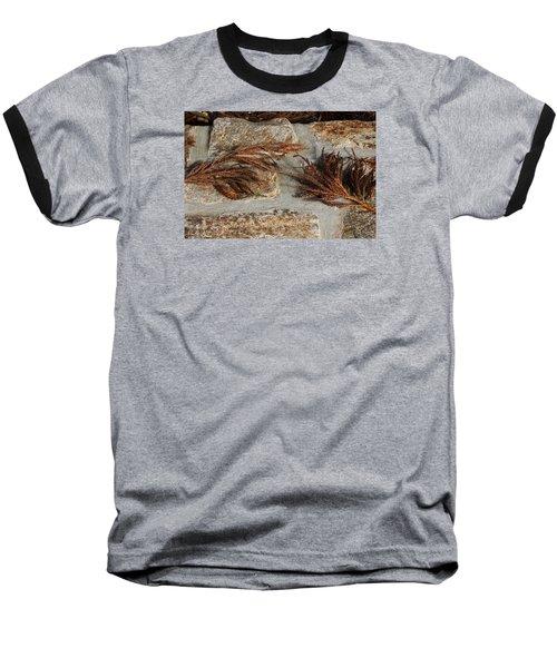Bronze Symmetry Baseball T-Shirt