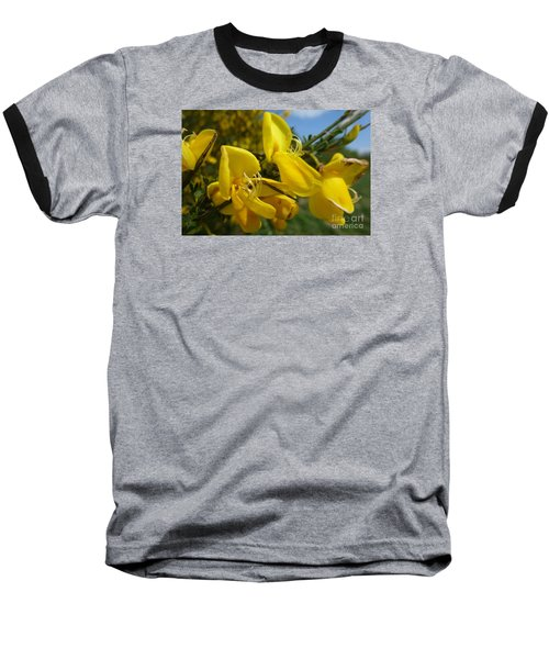 Broom In Bloom 3 Baseball T-Shirt