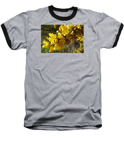 Broom In Bloom Baseball T-Shirt