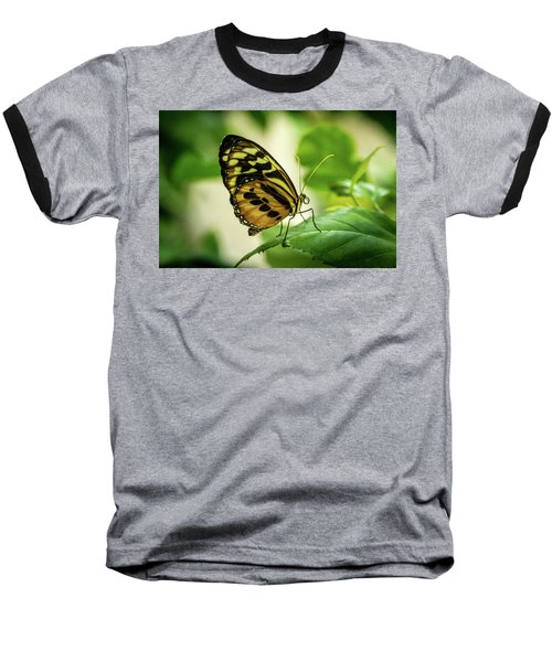 Brown And Black Tropical Butterfly Resting Baseball T-Shirt