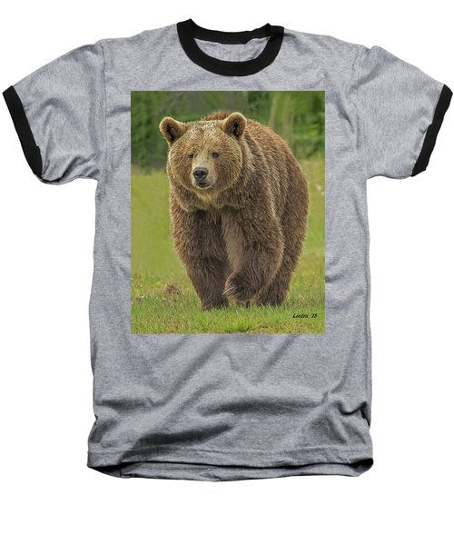 Brown Bear 1 Baseball T-Shirt