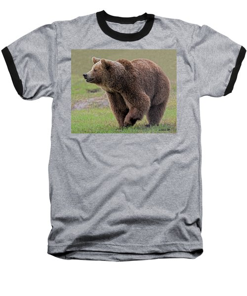 Brown Bear 14.5 Baseball T-Shirt