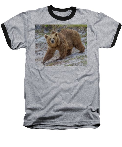 Brown Bear 3 Baseball T-Shirt