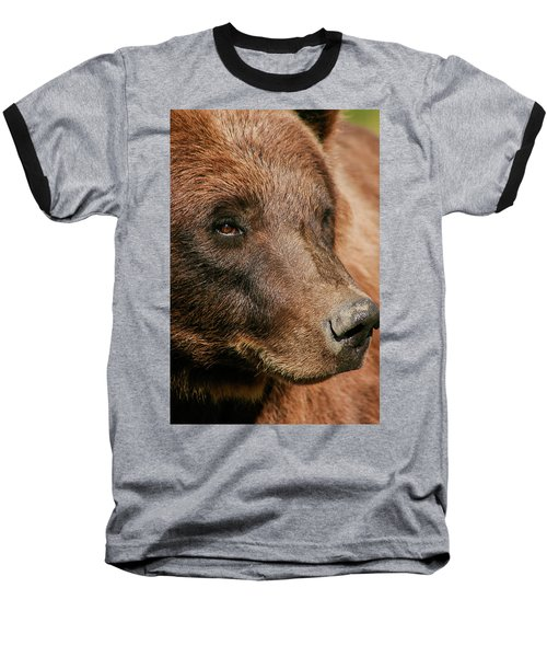 Brown Bear Baseball T-Shirt